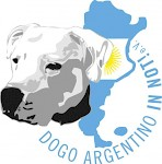 Dogo Argentino in Not e.V.